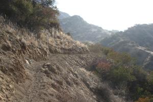 Fox Canyon trail